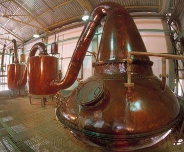 Rum 101 - Rum Basics: copper pot still at DUSA